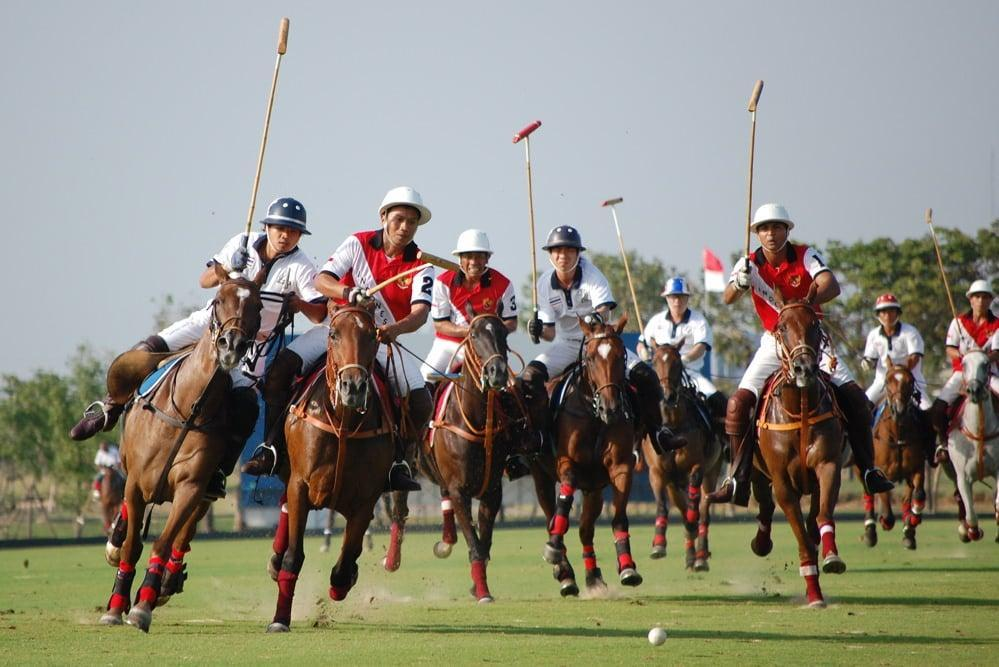 exciting polo action in scottsdale